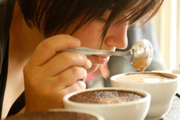 Qué es un barista cata de café - Cafemalist