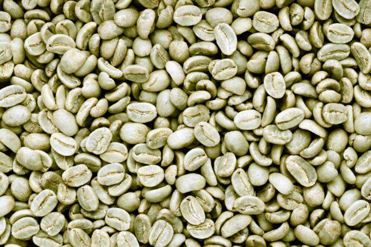cafe-engorda-o-adelgaza-cafemalist-granos-cafe-verde