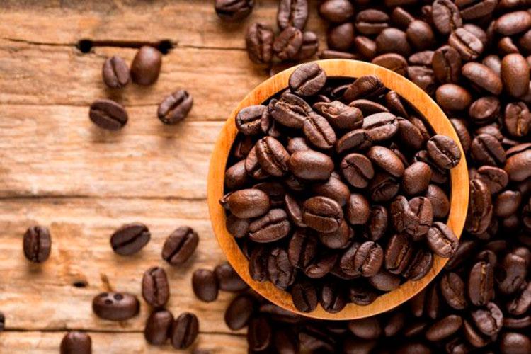 cafe java cafemalist variedad
