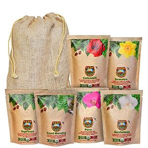 Granos-de-cafe-organico-Java-Planet cafemalist
