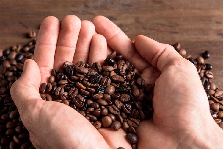 cafe de especialidad cafemalist